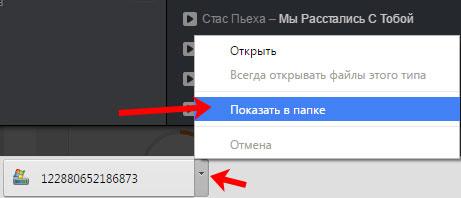 Показать скачанный файл в папке
