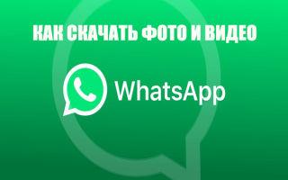 Скачивание фотографий и видео с Ватсап: пошагово со скриншотами