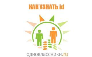 Узнать id в Одноклассниках: своей страницы, другого человека, без доступа к своему профилю