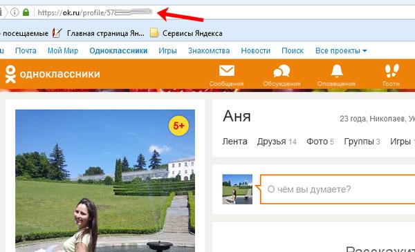 Адрес профиля в браузере