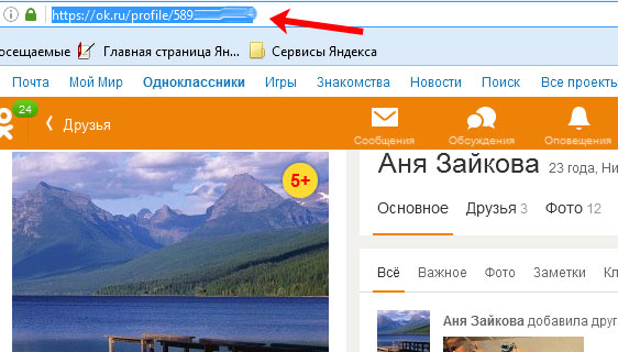 Ссылка на профиль друга в адресной строке браузера
