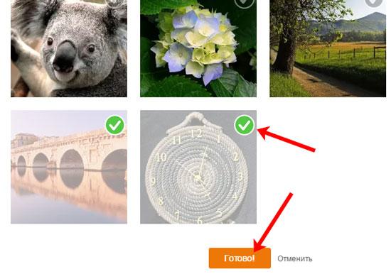 Отправить фото, загруженные в профиль