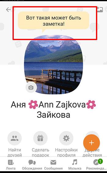 Так выглядит статус в мобильном приложении
