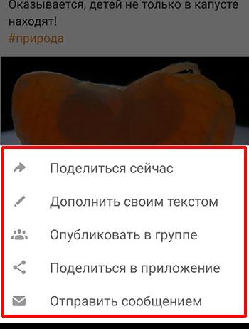 Как поделиться постом в другое приложение