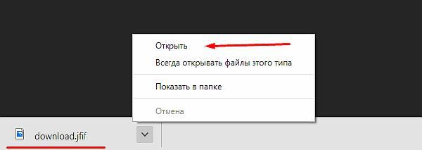 Загруженный файл в списке загрузок браузера