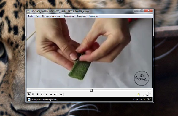 Видео воспроизводится на компьютере
