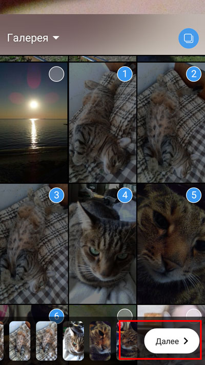 Отмечено 6 фотографий. Выбор кнопки «Далее»
