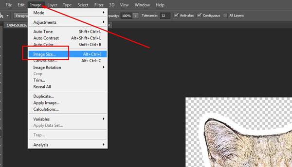 Выбор вкладки Image, строки Image size