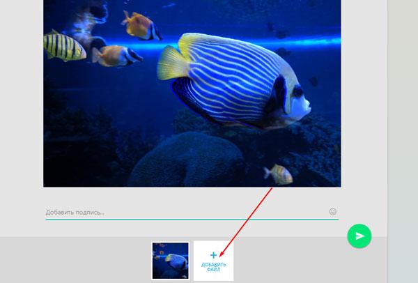 Стрелочка указывает на кнопку «добавить файл»